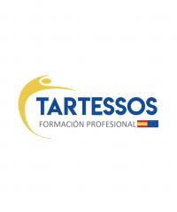 Centro de Estudios Internacionales Tartessos  ⭐️