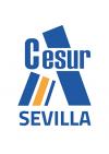Cesur Sevilla CAFD ⭐️